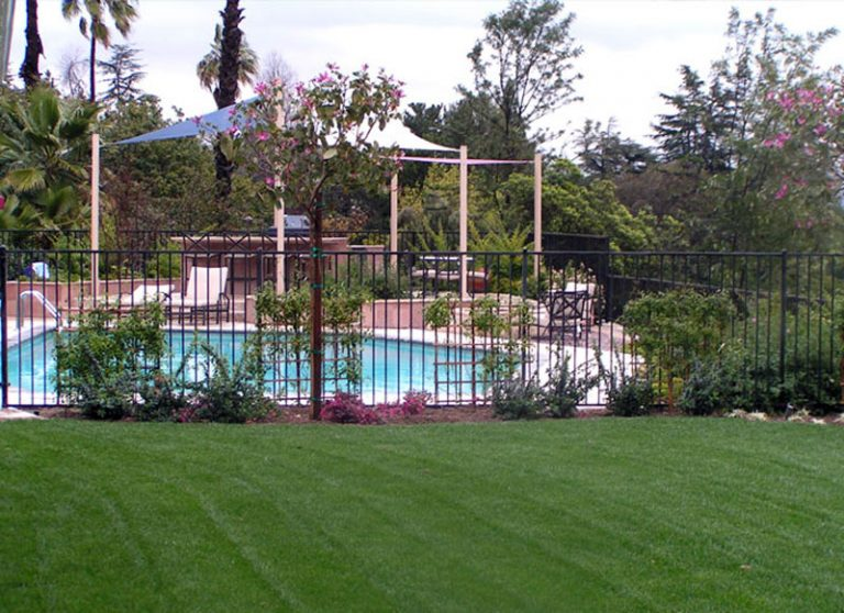 backyard1f_lg